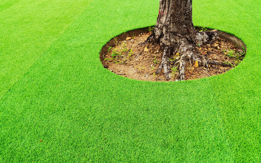Top 5 FAQs on Installing Synthetic Grass in Stockton Around Trees and Shrubs